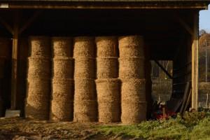 Beaumont-le-Roger-le-Home-la-ferme-300x200