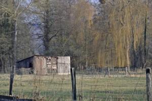 Launay-la-cabane-300x200